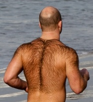 bald-man-hairy-back