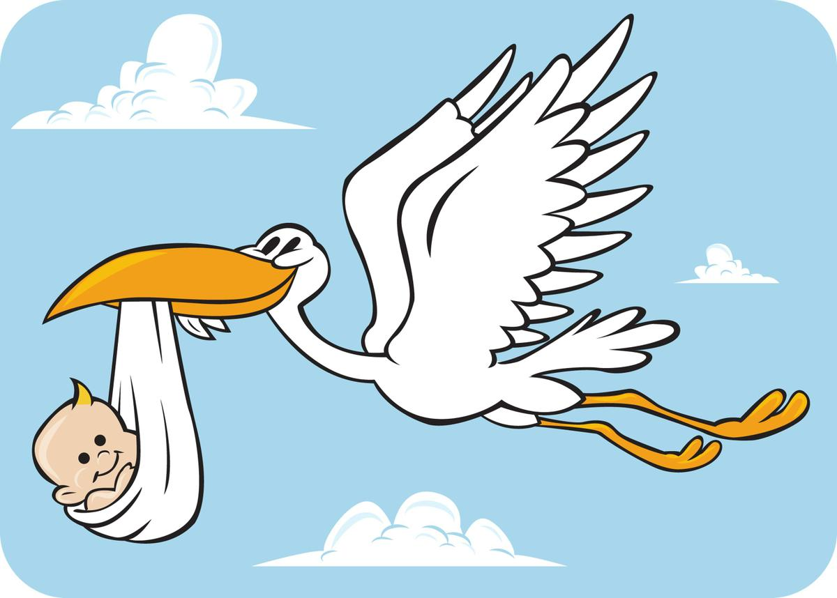 stork_baby
