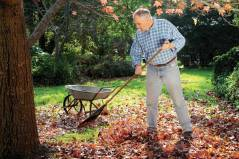 14293096171019018879grt-jf11-garden-gym-man-raking-i.jpg