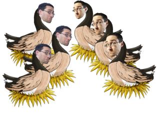 geeseblog
