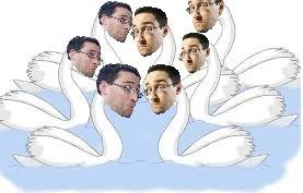 swansblog
